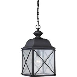 1 LT Outdoor Hanging Fixture with Clear Seed Glass