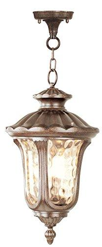 Livex Oxford 7658-50 Outdoor Hanging Lantern - 11Dia x 20.5H