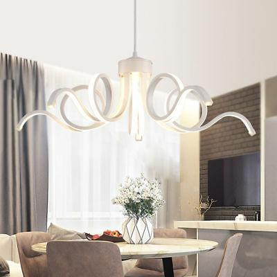 Pendant LED Ceiling Lights Dining Living Lamp Fixtures Warmwhite