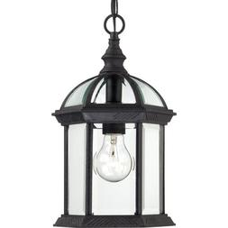 Nuvo Lighting 60/4979 Boxwood One Light Hanging Lantern 100
